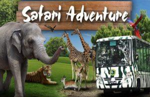 Jom,, Bercuti Ke Safari Zoo Di Surabaya